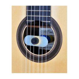 Oasis Guitar Humidifier