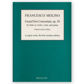 sheetmusic-molino-grand-trio-concertant-30