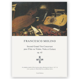 sheetmusic-molino-second-grand-trio-op45
