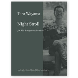 wayama-night-stroll