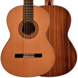 guitars-4P-toldo-XHBTfG-frontback