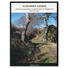 schubert lieder essay The fischer-dieskau book of lieder  'the book is introduced by a disappointingly banal essay [fischer-dieskau's] selection of texts, however, is another matter.