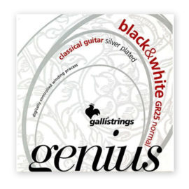 strings-galli-gr25